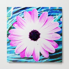 Making art with flower - blue tones Metal Print