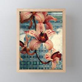 Ramble On Framed Mini Art Print