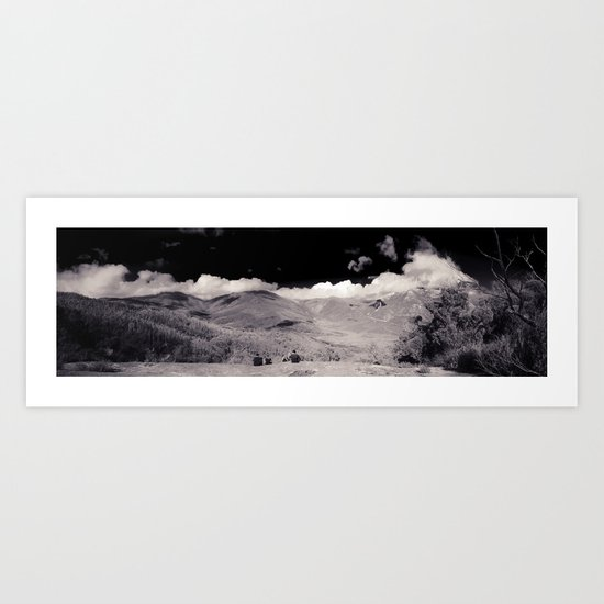 Lilly Pilly Gully Art Print