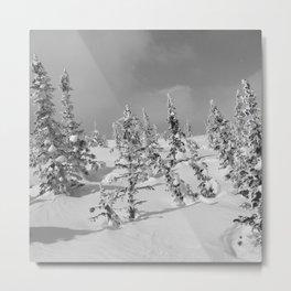 Winter day 26 Metal Print