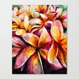 Maui Plumerias Canvas Print
