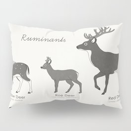 Infographic Guide to Forest Animals Pillow Sham