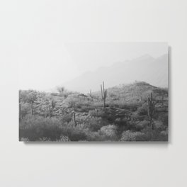 Wild West II - Black & White Version Metal Print