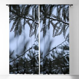 bald cypress 03 Blackout Curtain