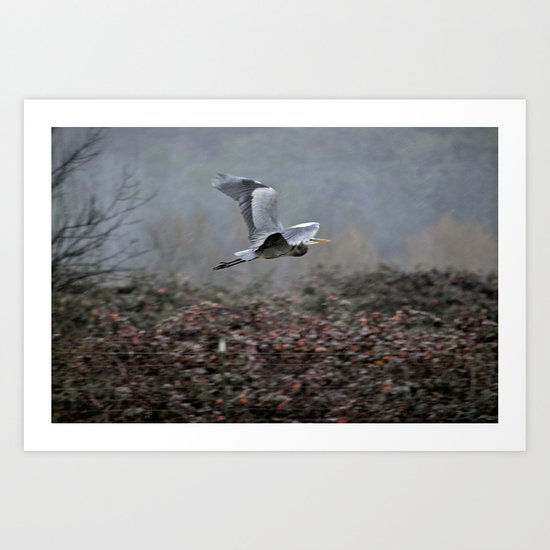 Blue Heron in the Rain  Art Print