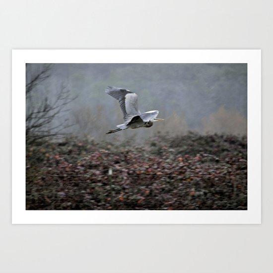 Blue Heron in the Rain  Art Print