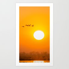 Birds at Sunrise Art Print