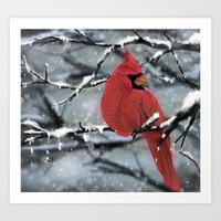 cardinal Art Prints featuring Cardinal by Ben Geiger