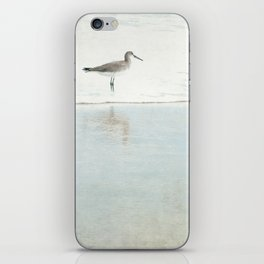 Reflecting Sandpiper iPhone Skin