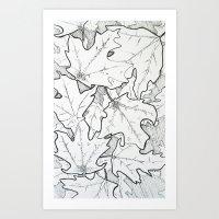A Hint of Maple Art Print