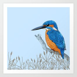 Kingfisher in reeds Art Print