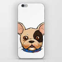 frenchie iPhone & iPod Skins featuring Frenchie by The Audyssey