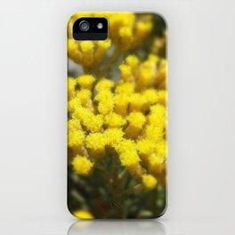 GOLDENSUN iPhone Case