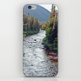 Forest Paradise iPhone Skin