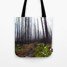 Excelsior Wildfire in the Maligne Valley, Jasper National Park, CA Tote Bag