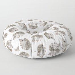 Hedgehog Jamboree Floor Pillow