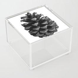 Pinecone Acrylic Box
