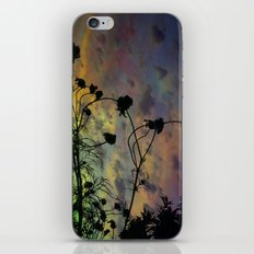 Prism Sun iPhone & iPod Skin