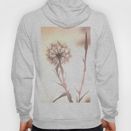Pink Distant Dandelion Flower - Floral Nature Photography Art and Accessories Hoody