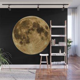 Telescopic Photograph of Earth's Moon Wall Mural