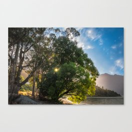 Sunstar behind some trees on the lake shore at Wilson Bay, New Zealand Canvas Print