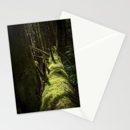 Fallen Forest Stationery Cards