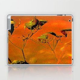Dry Pods Laptop & iPad Skin
