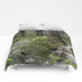 Mountains, forest, water. Comforters