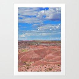 Petrified Forest National Park Art Print
