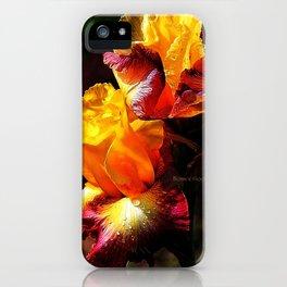ALTERED IRIS iPhone Case