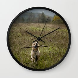 Fetching Wall Clock