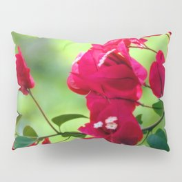 Ruby Blooms Pillow Sham