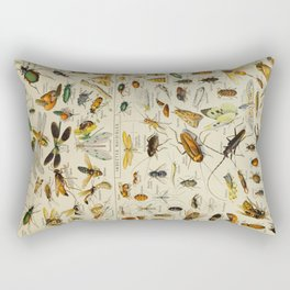 Insects Vintage Scientific Illustration French Language Encyclopedia Lithographs Educational Rectangular Pillow