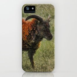 Soay Sheep iPhone Case