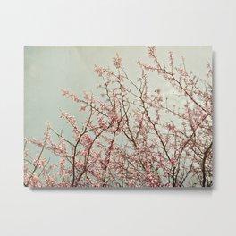 Ode to Spring Metal Print
