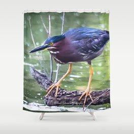 Green Heron Hunting Shower Curtain