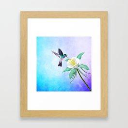 hummingbird. Framed Art Print