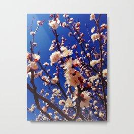 Thinking of Spring Metal Print