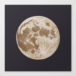 Moon Portrait 5, Linen Moon Canvas Print