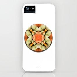 4 Point Mandala - Pumpkins & Gourds iPhone Case