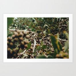 Gumtree 2 Art Print