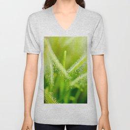 Green leaves of sundews Unisex V-Neck