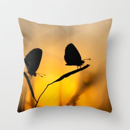 Silhouette of moths Throw Pillow
