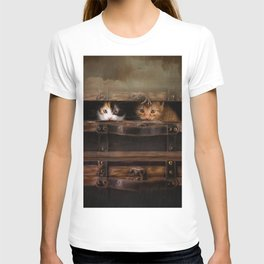 Little cute kitten in an old wooden case T-shirt