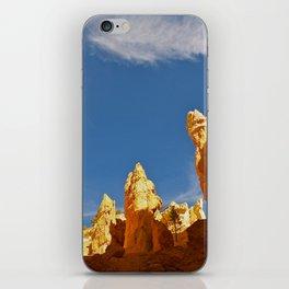 The Navajo Trail 2 iPhone Skin