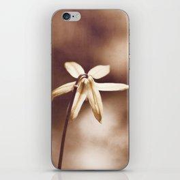 Copper Nature Photography, Modern Brown Minimalism Flower Art, Copper Botanical Minimal Print iPhone Skin