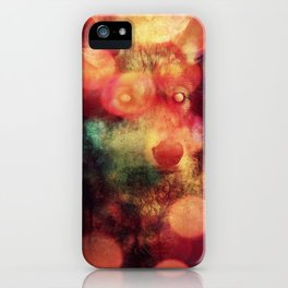 Crossing the Rubicon iPhone Case