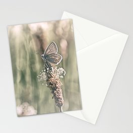 Keep an eye on the world around you.... Stationery Cards