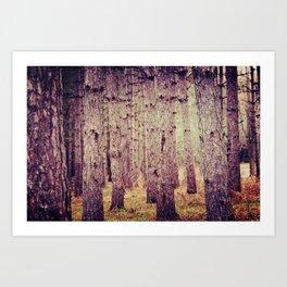Dear Forest  Art Print