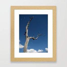 """Stand Alone"" Framed Art Print"